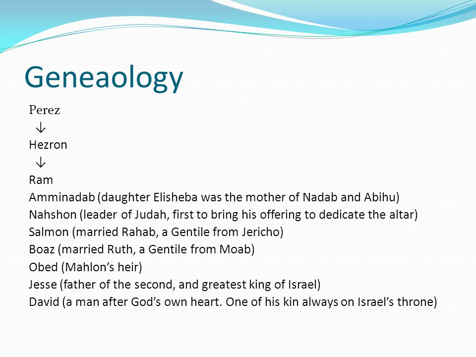 Geneaology Perez ↓ Hezron ↓ Ram Amminadab (daughter Elisheba was the mother of Nadab and Abihu) Nahshon (leader of Judah, first to bring his offering