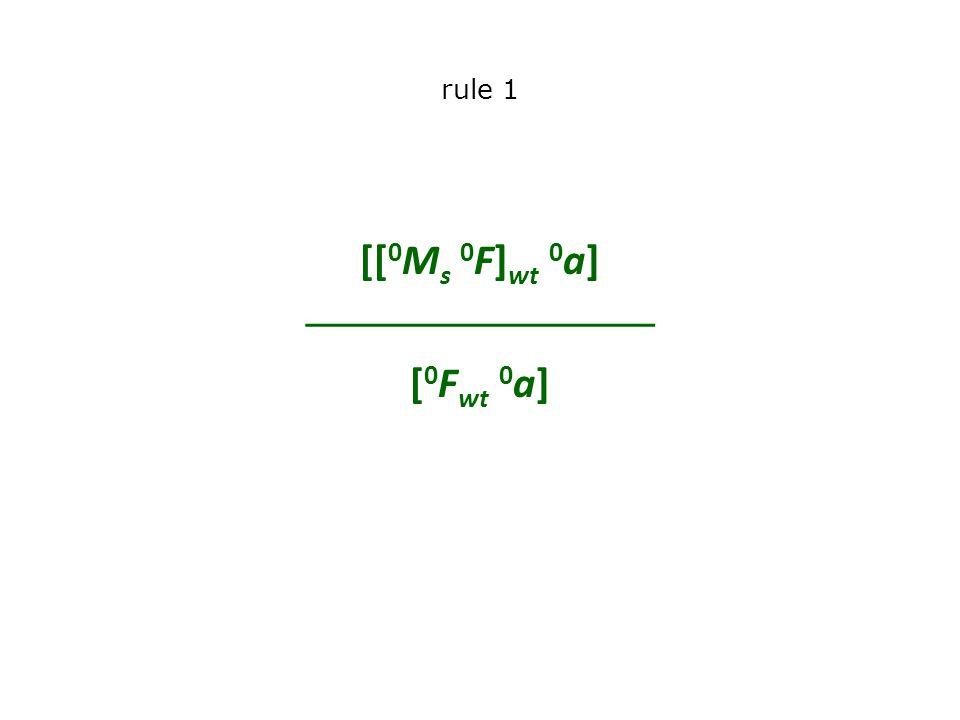 rule 1 [[ 0 M s 0 F] wt 0 a]  [ 0 F wt 0 a]