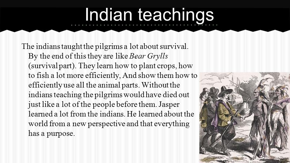 The indians taught the pilgrims a lot about survival.