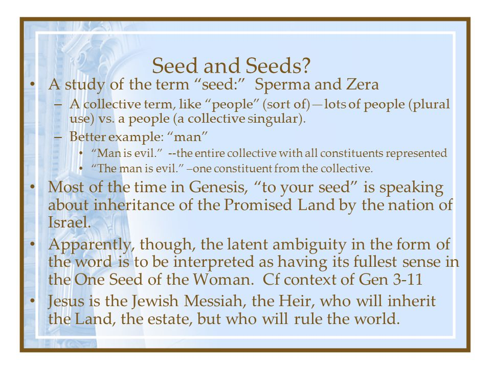 """Seed and Seeds? A study of the term """"seed:"""" Sperma and Zera – A collective term, like """"people"""" (sort of)—lots of people (plural use) vs. a people (a c"""