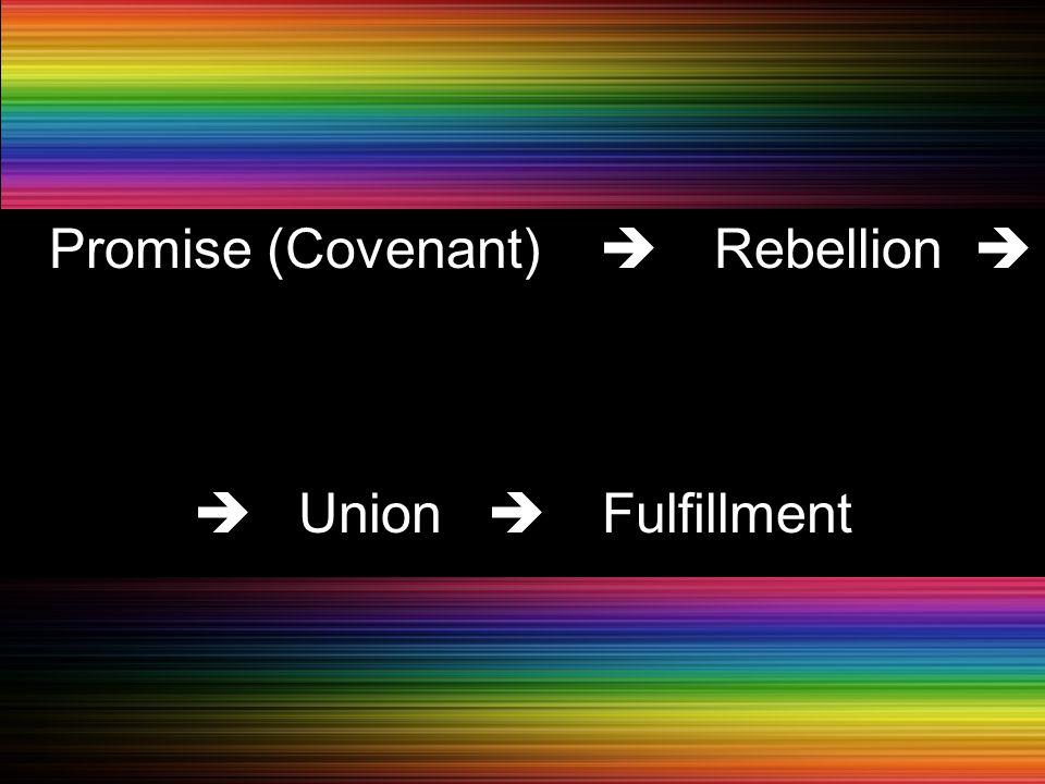 PPromise (Covenant)  Rebellion   Union  Fulfillment