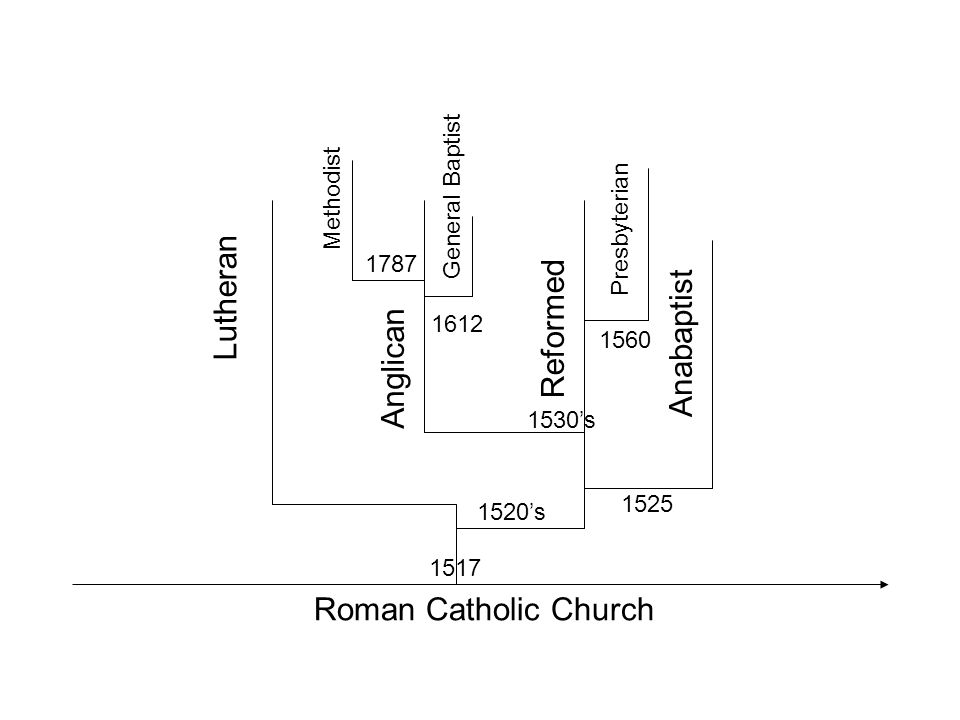 Roman Catholic Church Lutheran Anglican Reformed Anabaptist Methodist General Baptist Presbyterian 1517 1520's 1530's 1560 1525 1787 1612