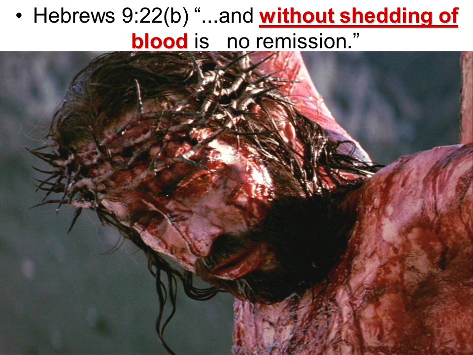 without shedding of bloodHebrews 9:22(b) ...and without shedding of blood is no remission.