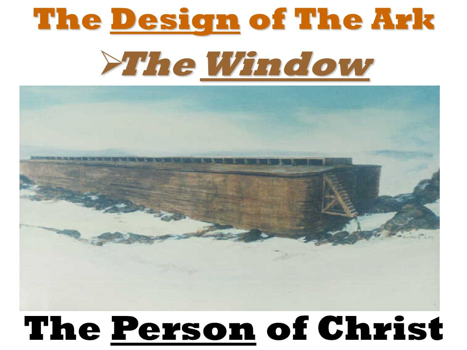 The Design of The Ark  The Window The Person of Christ