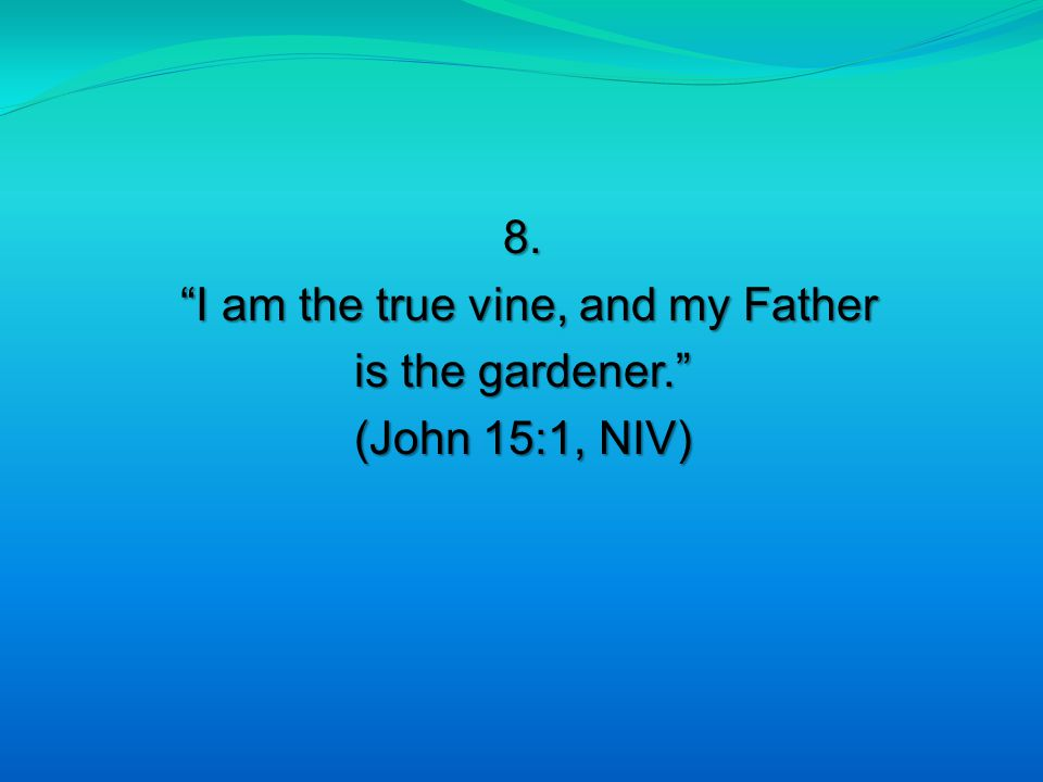 """8. """"I am the true vine, and my Father """"I am the true vine, and my Father is the gardener."""" (John 15:1, NIV)"""