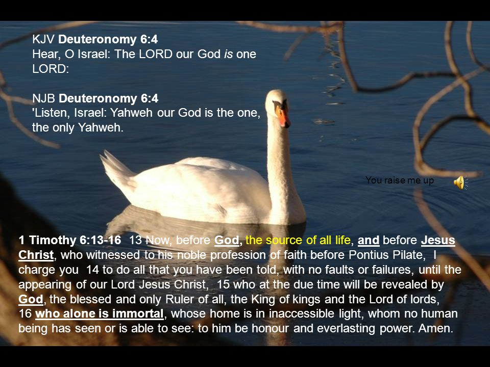 KJV Deuteronomy 6:4 Hear, O Israel: The LORD our God is one LORD: NJB Deuteronomy 6:4 'Listen, Israel: Yahweh our God is the one, the only Yahweh. 1 T