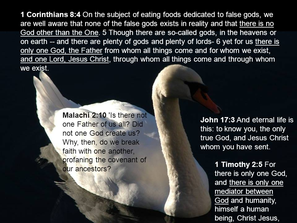 1 Corinthians 8:4 On the subject of eating foods dedicated to false gods, we are well aware that none of the false gods exists in reality and that the