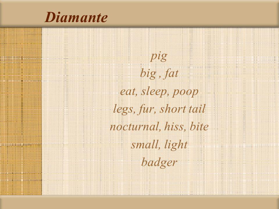 Diamante pig big, fat eat, sleep, poop legs, fur, short tail nocturnal, hiss, bite small, light badger