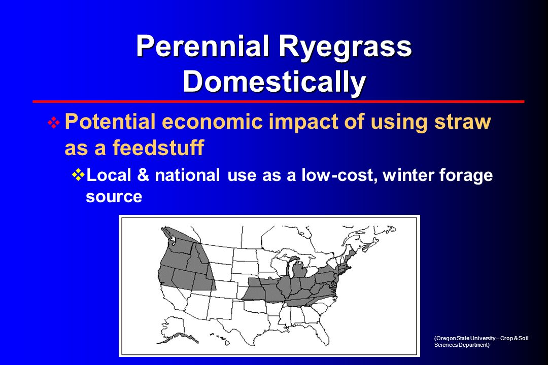 Perennial Ryegrass Domestically  Potential economic impact of using straw as a feedstuff  Local & national use as a low-cost, winter forage source (Oregon State University – Crop & Soil Sciences Department)