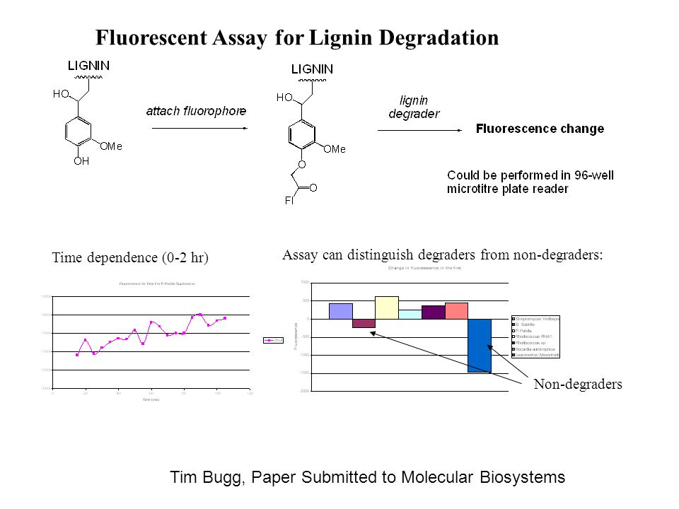 Fluorescent Assay for Lignin Degradation Time dependence (0-2 hr) Non-degraders Assay can distinguish degraders from non-degraders: Tim Bugg, Paper Submitted to Molecular Biosystems