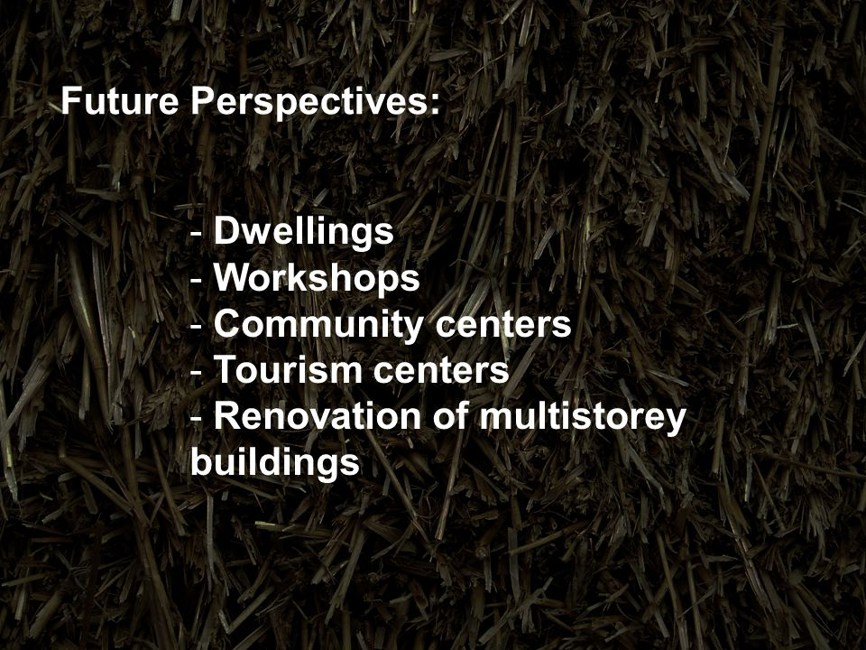Future Perspectives: - Dwellings - Workshops - Community centers - Tourism centers - Renovation of multistorey buildings