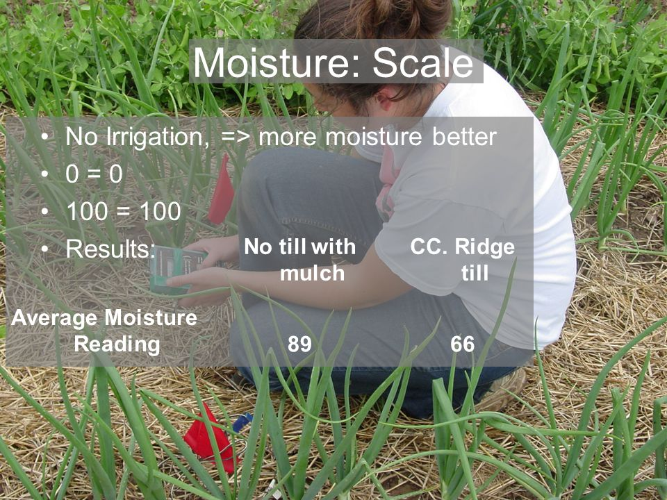 Moisture: Scale No Irrigation, => more moisture better 0 = = 100 Results: No till with mulch CC.