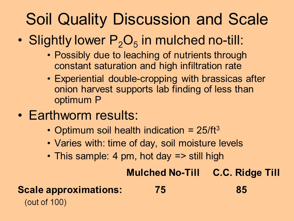 Soil Quality Discussion and Scale Slightly lower P 2 O 5 in mulched no-till: Possibly due to leaching of nutrients through constant saturation and high infiltration rate Experiential double-cropping with brassicas after onion harvest supports lab finding of less than optimum P Earthworm results: Optimum soil health indication = 25/ft 3 Varies with: time of day, soil moisture levels This sample: 4 pm, hot day => still high Mulched No-Till C.C.