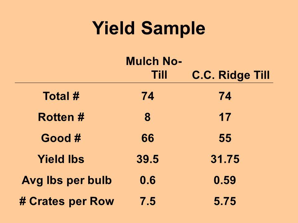 Yield Sample Mulch No- TillC.C. Ridge Till Total #74 Rotten #817 Good #6655 Yield lbs39.531.75 Avg lbs per bulb0.60.59 # Crates per Row7.55.75