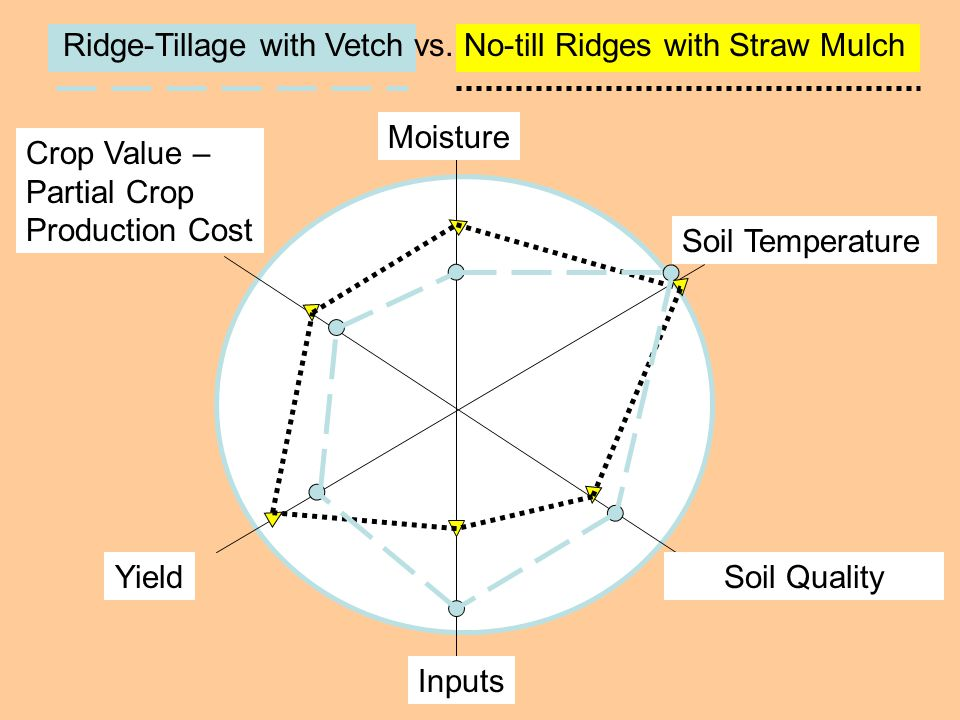 Moisture Crop Value – Partial Crop Production Cost YieldSoil Quality Soil Temperature Inputs Ridge-Tillage with Vetch vs. No-till Ridges with Straw Mu
