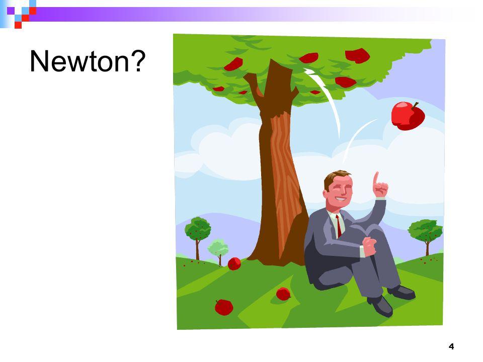 4 Newton