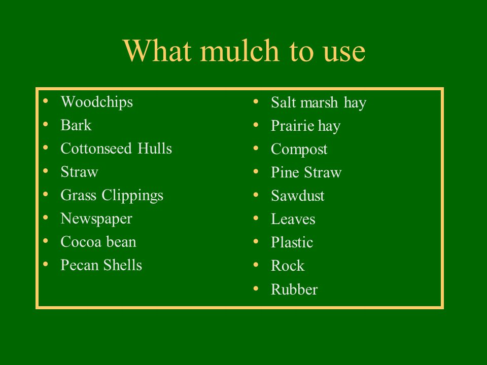 What mulch to use Woodchips Bark Cottonseed Hulls Straw Grass Clippings Newspaper Cocoa bean Pecan Shells Salt marsh hay Prairie hay Compost Pine Stra