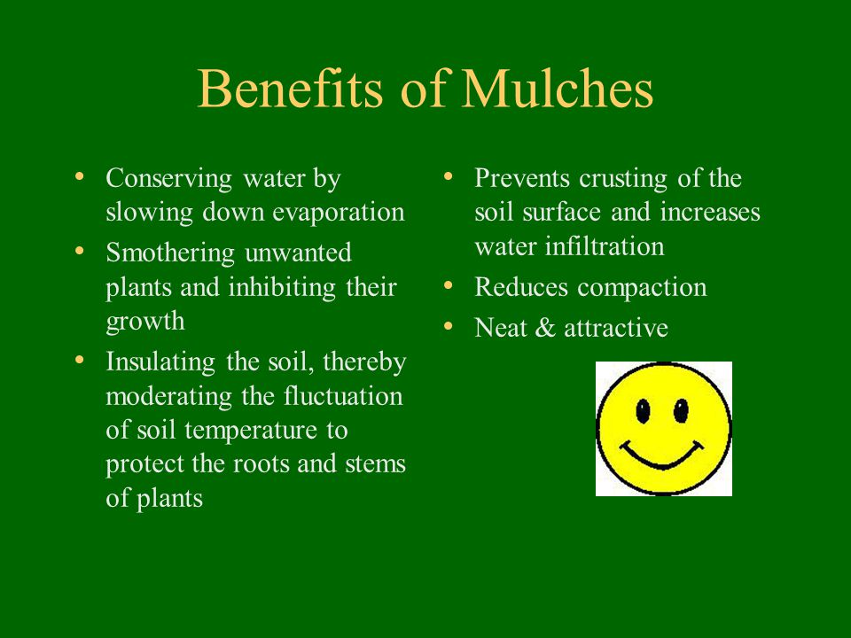 Benefits of Mulches Conserving water by slowing down evaporation Smothering unwanted plants and inhibiting their growth Insulating the soil, thereby m