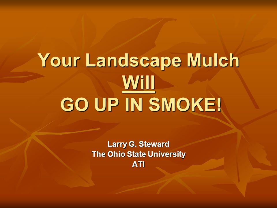 Your Landscape Mulch Will GO UP IN SMOKE! Larry G. Steward The Ohio State University ATI