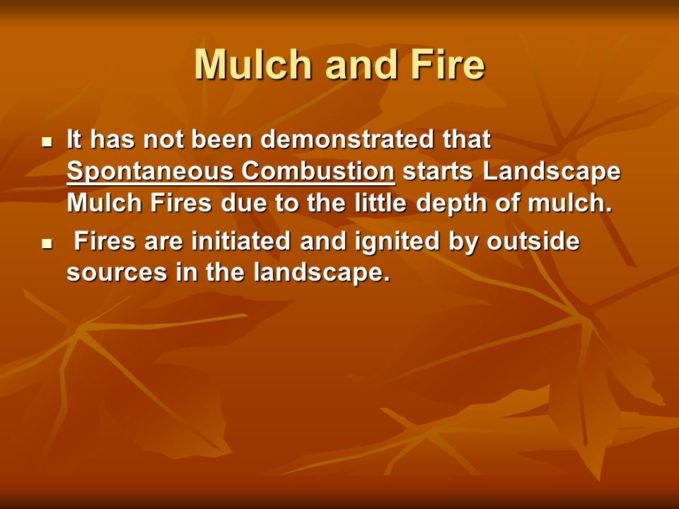 Mulch and Fire It has not been demonstrated that Spontaneous Combustion starts Landscape Mulch Fires due to the little depth of mulch.
