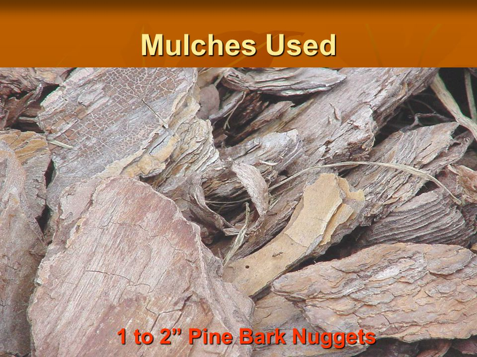 Mulches Used 1 to 2 Pine Bark Nuggets