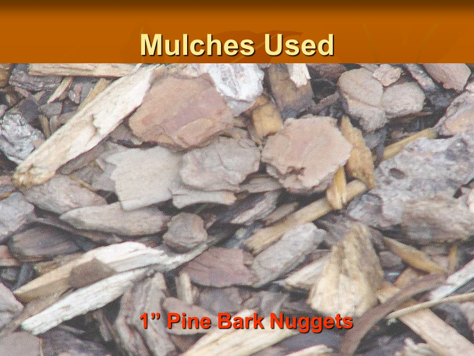 OUR IGNITION RESULTS  OAT STRAWVERY HIGH  PINE STRAWVERY HIGH  GROUND RUBBER TIRES (DYED)VERY HIGH  SHREDDED PINE BARK, CYPRESS,  or HARDWOOD-- HIGH*  GROUND DYED PALLETSVERY HIGH*  YARD COMPOSTMEDIUM*  PINE BARK CHUNKS-TWO SIZESLOW  TURFVERY LOW  COCOA HULLSVERY LOW  BRICK CHIPSNONE