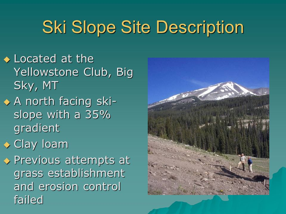 Ski Slope Site Description  Located at the Yellowstone Club, Big Sky, MT  A north facing ski- slope with a 35% gradient  Clay loam  Previous attempts at grass establishment and erosion control failed