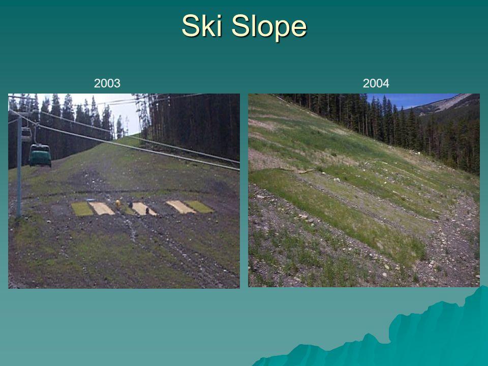 Ski Slope 20032004