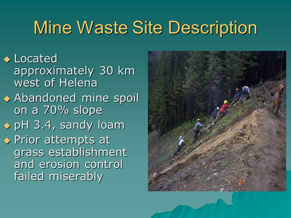 Mine Waste Site Description  Located approximately 30 km west of Helena  Abandoned mine spoil on a 70% slope  pH 3.4, sandy loam  Prior attempts at grass establishment and erosion control failed miserably