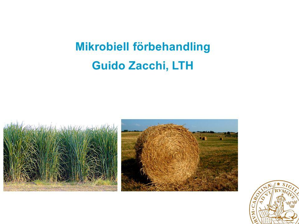 Mikrobiell förbehandling Guido Zacchi, LTH