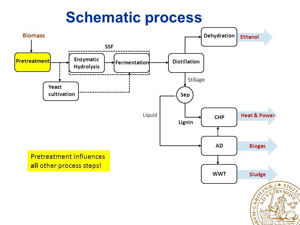 Pretreatment conditions OM-SOM+STM-STM+SRefRef.L Storage with lactic acid (months) 1122-- Concentration of.