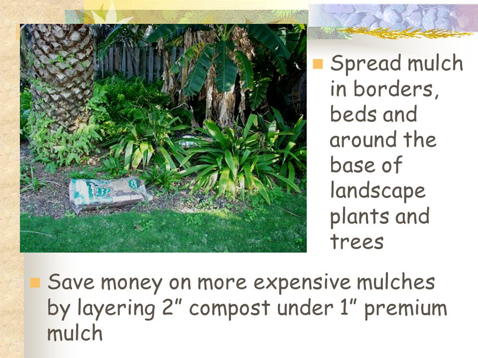 Spread mulch in borders, beds and around the base of landscape plants and trees Save money on more expensive mulches by layering 2 compost under 1 premium mulch