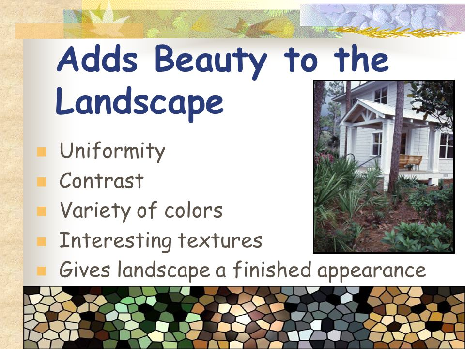 Adds Beauty to the Landscape Uniformity Contrast Variety of colors Interesting textures Gives landscape a finished appearance