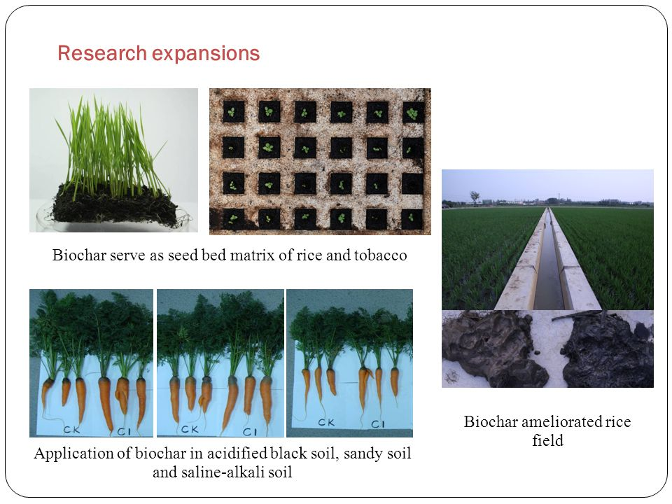 Research expansions Biochar serve as seed bed matrix of rice and tobacco Application of biochar in acidified black soil, sandy soil and saline-alkali