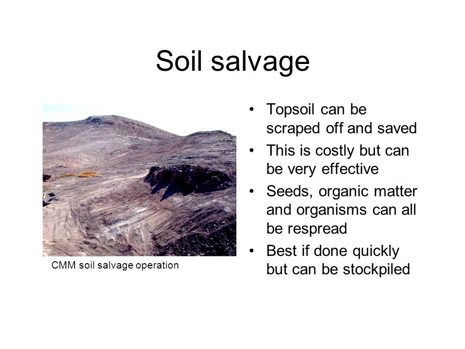 Soil salvage Topsoil can be scraped off and saved This is costly but can be very effective Seeds, organic matter and organisms can all be respread Best if done quickly but can be stockpiled CMM soil salvage operation