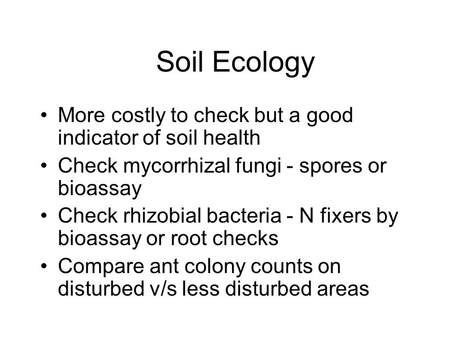 Soil Ecology More costly to check but a good indicator of soil health Check mycorrhizal fungi - spores or bioassay Check rhizobial bacteria - N fixers by bioassay or root checks Compare ant colony counts on disturbed v/s less disturbed areas