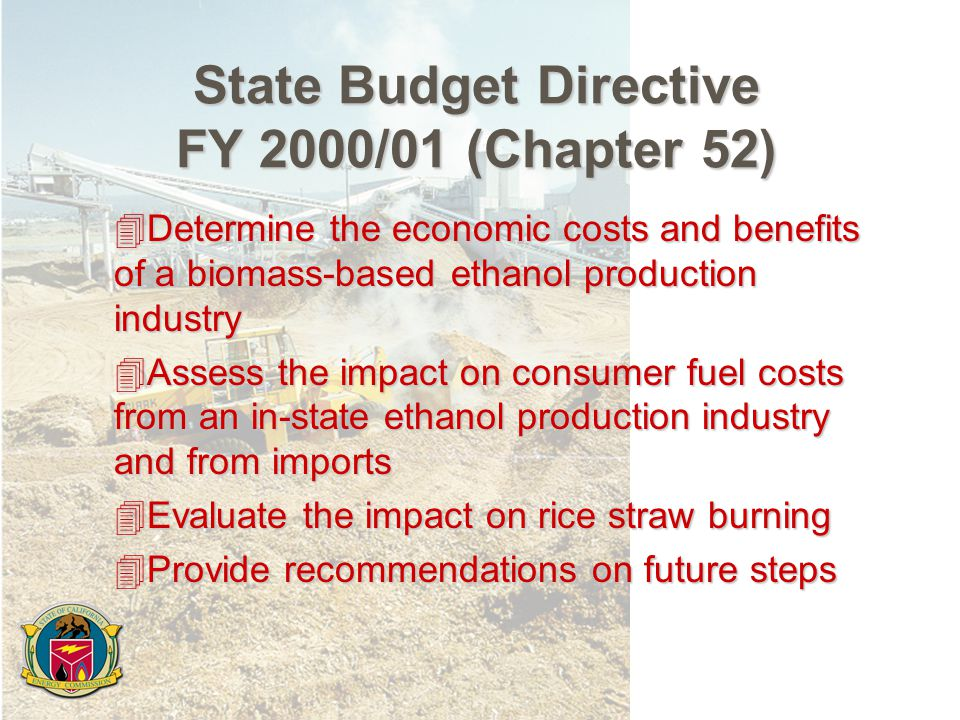 State Budget Directive FY 2000/01 (Chapter 52) 4Determine the economic costs and benefits of a biomass-based ethanol production industry 4Assess the impact on consumer fuel costs from an in-state ethanol production industry and from imports 4Evaluate the impact on rice straw burning 4Provide recommendations on future steps