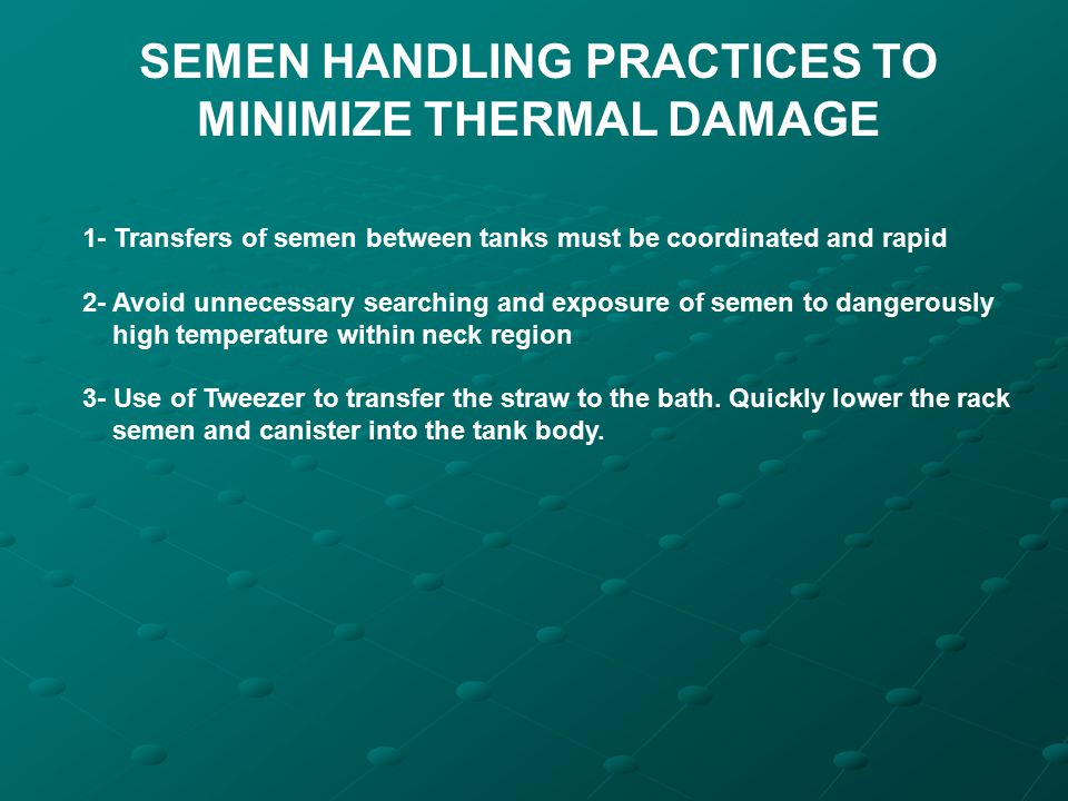 SEMEN HANDLING PRACTICES TO MINIMIZE THERMAL DAMAGE 1- Transfers of semen between tanks must be coordinated and rapid 2- Avoid unnecessary searching a