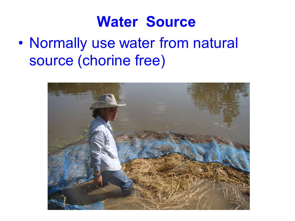 Water Source Normally use water from natural source (chorine free)