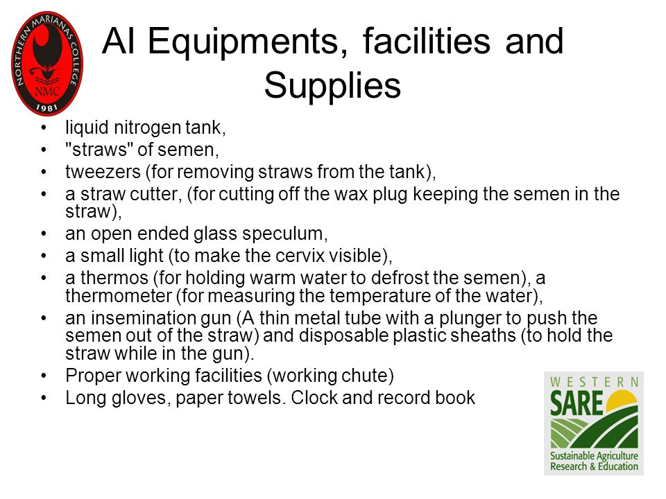 AI Equipments, facilities and Supplies liquid nitrogen tank, straws of semen, tweezers (for removing straws from the tank), a straw cutter, (for cutting off the wax plug keeping the semen in the straw), an open ended glass speculum, a small light (to make the cervix visible), a thermos (for holding warm water to defrost the semen), a thermometer (for measuring the temperature of the water), an insemination gun (A thin metal tube with a plunger to push the semen out of the straw) and disposable plastic sheaths (to hold the straw while in the gun).