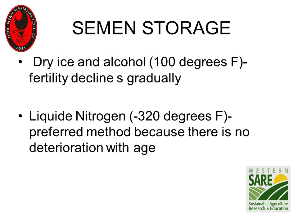 SEMEN STORAGE Dry ice and alcohol (100 degrees F)- fertility decline s gradually Liquide Nitrogen (-320 degrees F)- preferred method because there is no deterioration with age