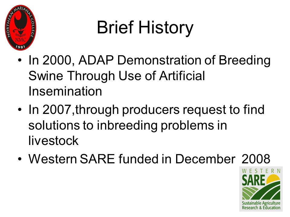 Brief History In 2000, ADAP Demonstration of Breeding Swine Through Use of Artificial Insemination In 2007,through producers request to find solutions to inbreeding problems in livestock Western SARE funded in December 2008