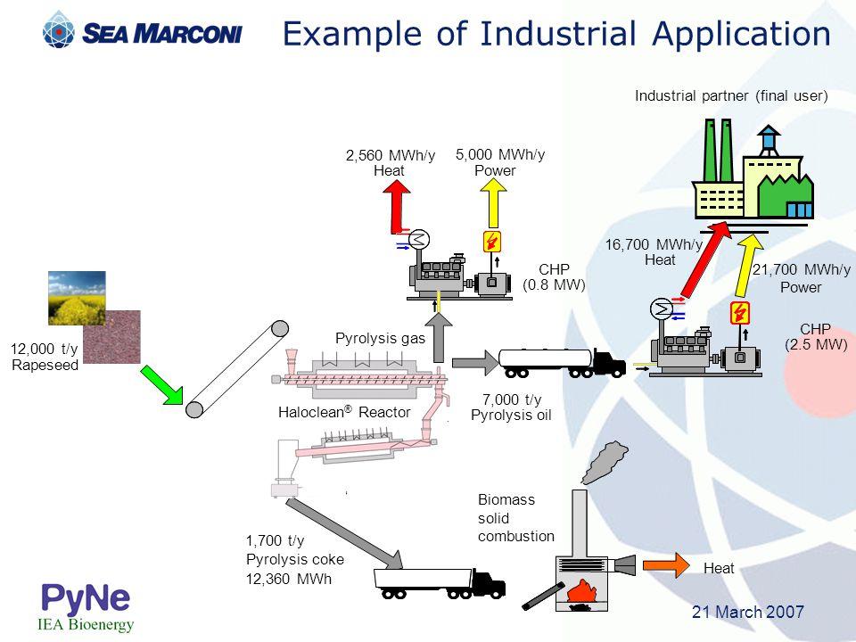 21 March 2007 12,000 t/y Rapeseed 2,560 MWh/y Heat CHP (0.8 MW) 1,700 t/y Pyrolysis coke 12,360 MWh 7,000 t/y Pyrolysis oil 5,000 MWh/y Power Heat Bio