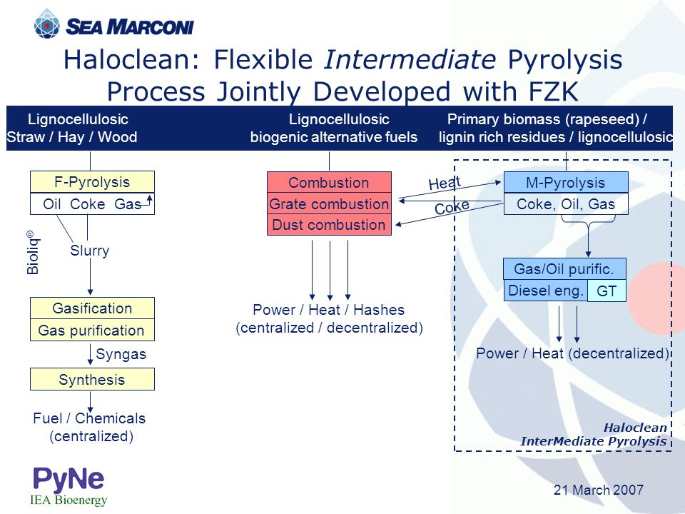 21 March 2007 Haloclean: Flexible Intermediate Pyrolysis Process Jointly Developed with FZK Lignocellulosic Lignocellulosic Primary biomass (rapeseed)