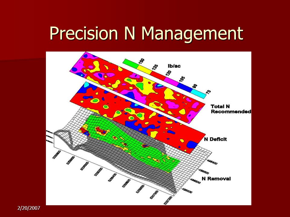 2/20/2007 Precision N Management