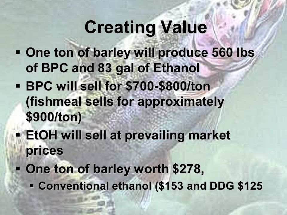 Creating Value  One ton of barley will produce 560 lbs of BPC and 83 gal of Ethanol  BPC will sell for $700-$800/ton (fishmeal sells for approximately $900/ton)  EtOH will sell at prevailing market prices  One ton of barley worth $278,  Conventional ethanol ($153 and DDG $125