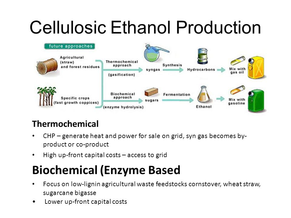 Cellulosic Ethanol Production Thermochemical CHP – generate heat and power for sale on grid, syn gas becomes by- product or co-product High up-front capital costs – access to grid Biochemical (Enzyme Based Focus on low-lignin agricultural waste feedstocks cornstover, wheat straw, sugarcane bigasse Lower up-front capital costs