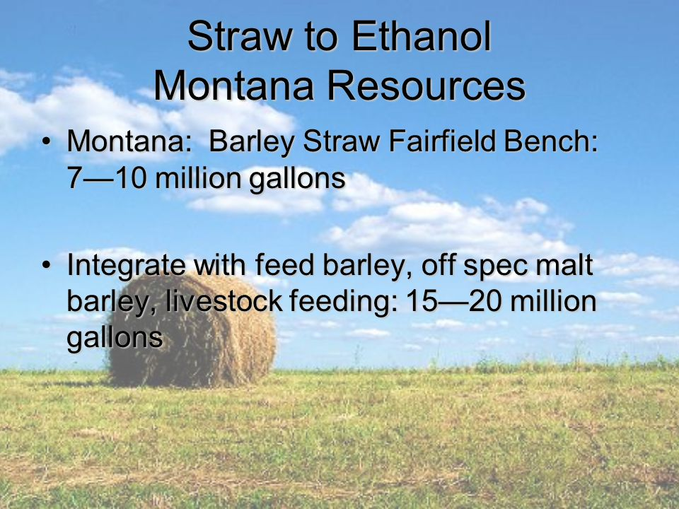 Straw to Ethanol Montana Resources Montana: Barley Straw Fairfield Bench: 7—10 million gallonsMontana: Barley Straw Fairfield Bench: 7—10 million gallons Integrate with feed barley, off spec malt barley, livestock feeding: 15—20 million gallonsIntegrate with feed barley, off spec malt barley, livestock feeding: 15—20 million gallons