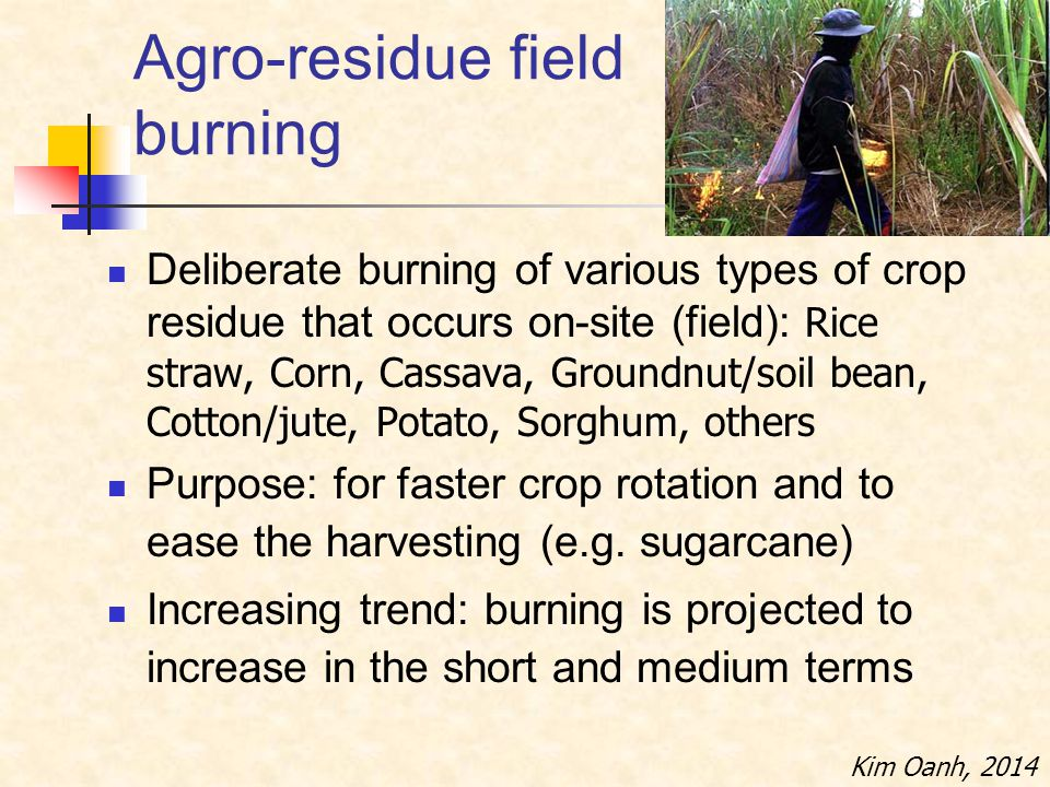 Agro-residue field burning Deliberate burning of various types of crop residue that occurs on-site (field): Rice straw, Corn, Cassava, Groundnut/soil bean, Cotton/jute, Potato, Sorghum, others Purpose: for faster crop rotation and to ease the harvesting (e.g.