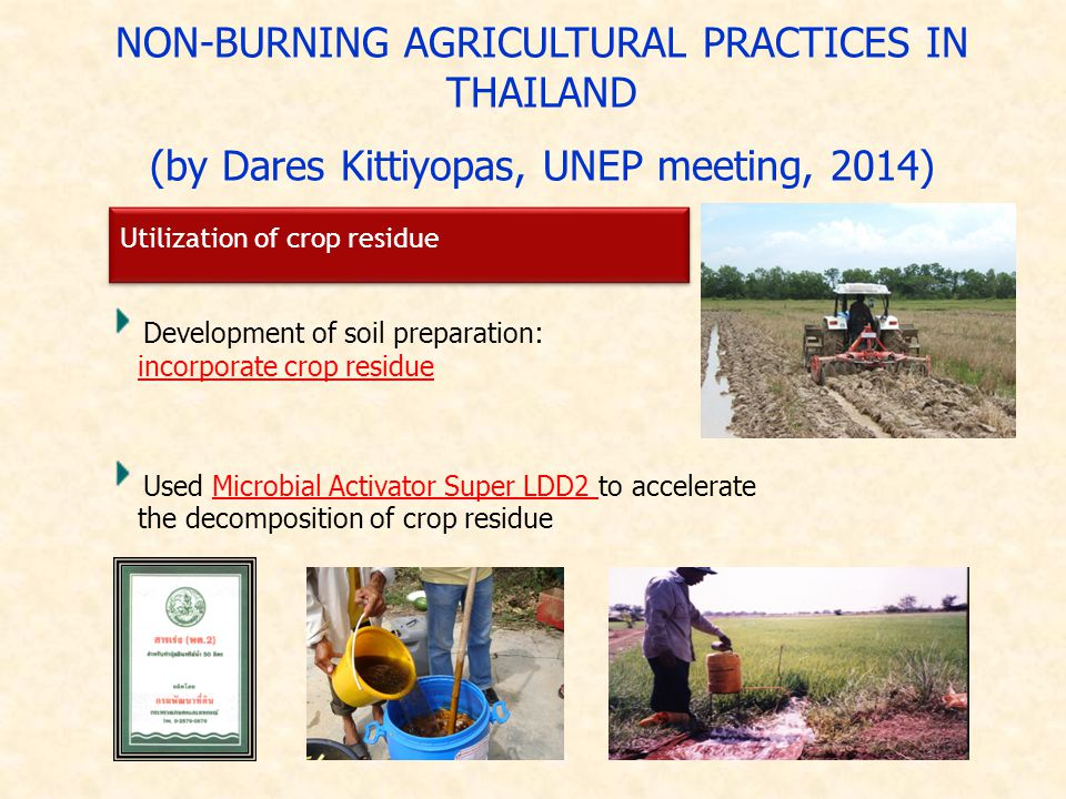 NON-BURNING AGRICULTURAL PRACTICES IN THAILAND (by Dares Kittiyopas, UNEP meeting, 2014) Development of soil preparation: incorporate crop residue Utilization of crop residue Used Microbial Activator Super LDD2 to accelerate the decomposition of crop residue